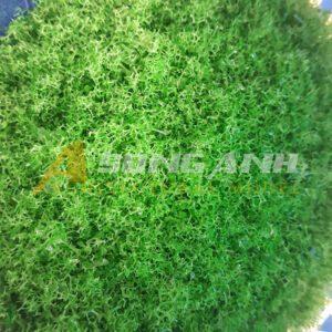 Bột cây mô hình loại xốp xanh nhạt HH02-BAQS0202
